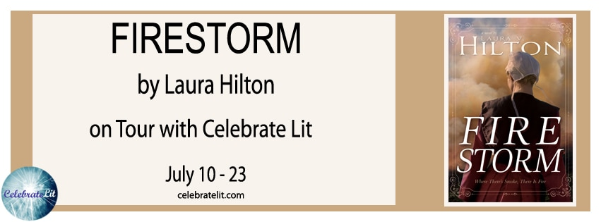 Firestorm by Laura V. Hilton - Book Review, Preview