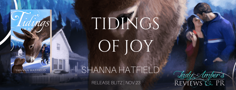 Tidings of Joy by Shanna Hatfield - Spotlight, Preview