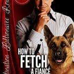 How to Fetch a Fiance by Rachelle J Christensen
