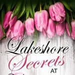 Lakeshore Secrets at Willow Valley by Audrey Delaine