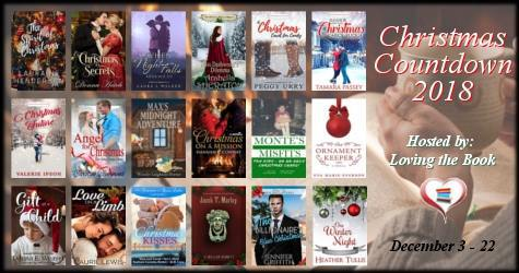 Christmas on a Mission by Hannah R. Conway - Spotlight