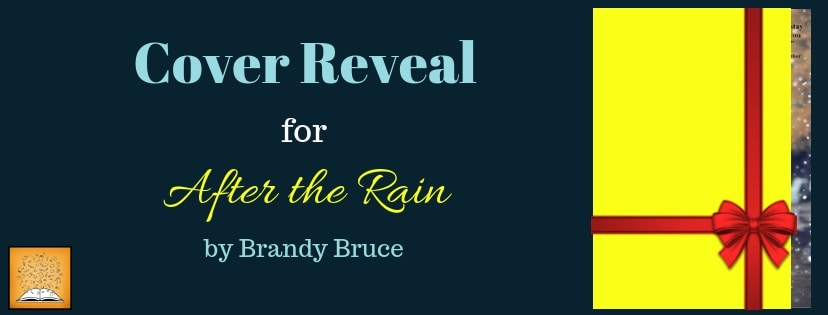 After the Rain by Brandy Bruce - Cover Reveal - Giveaway