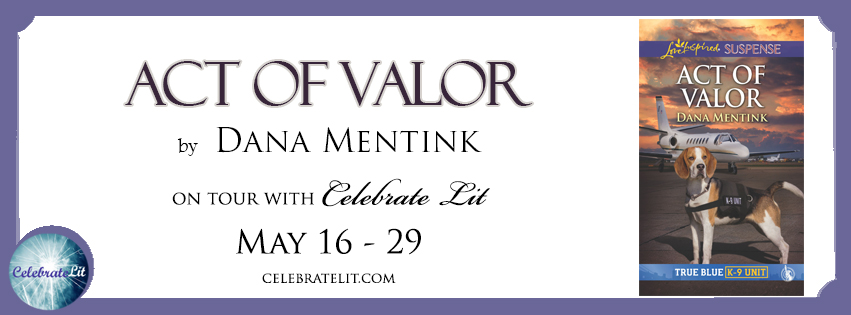 Act of Valor by Dana Mentink - Book Review, Preview
