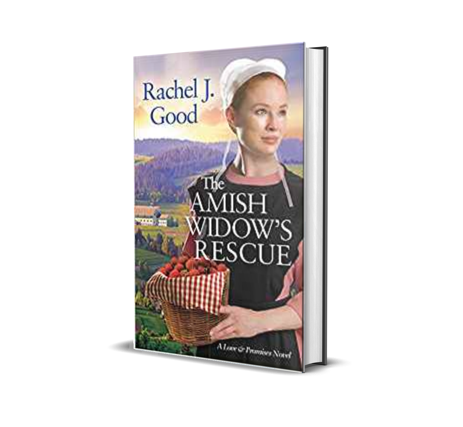 The Amish Widow's Rescue by Rachel J. Good