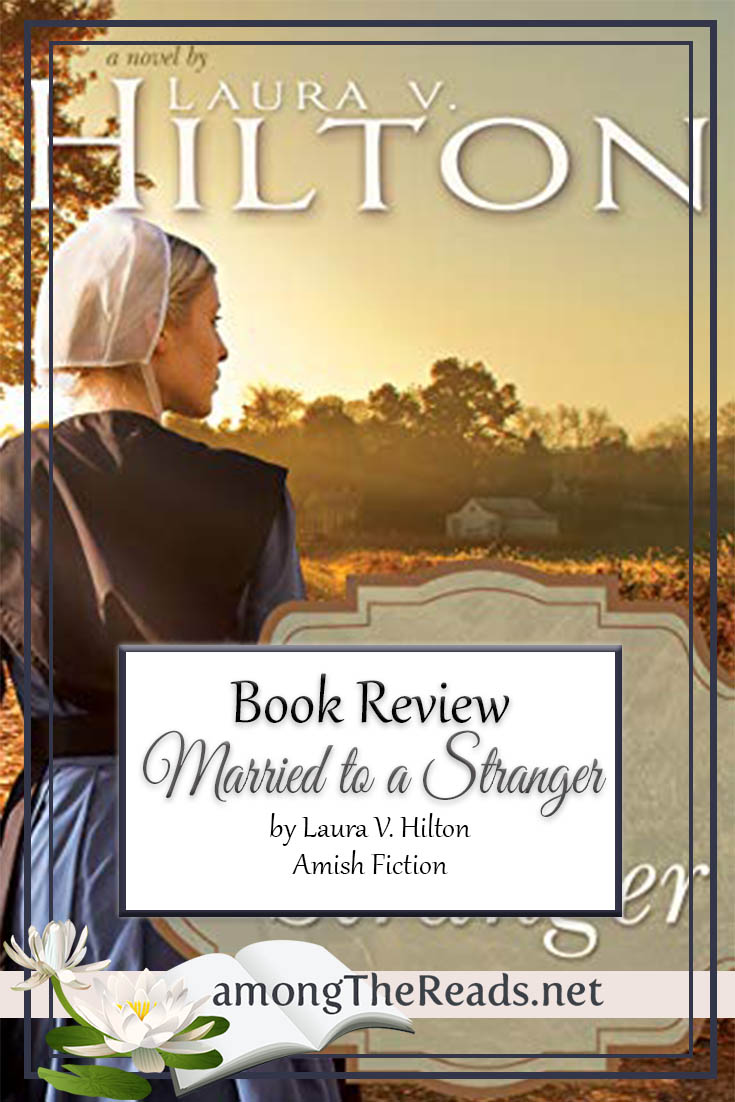 Married to a Stranger by Laura V. Hilton – Book Review, Preview