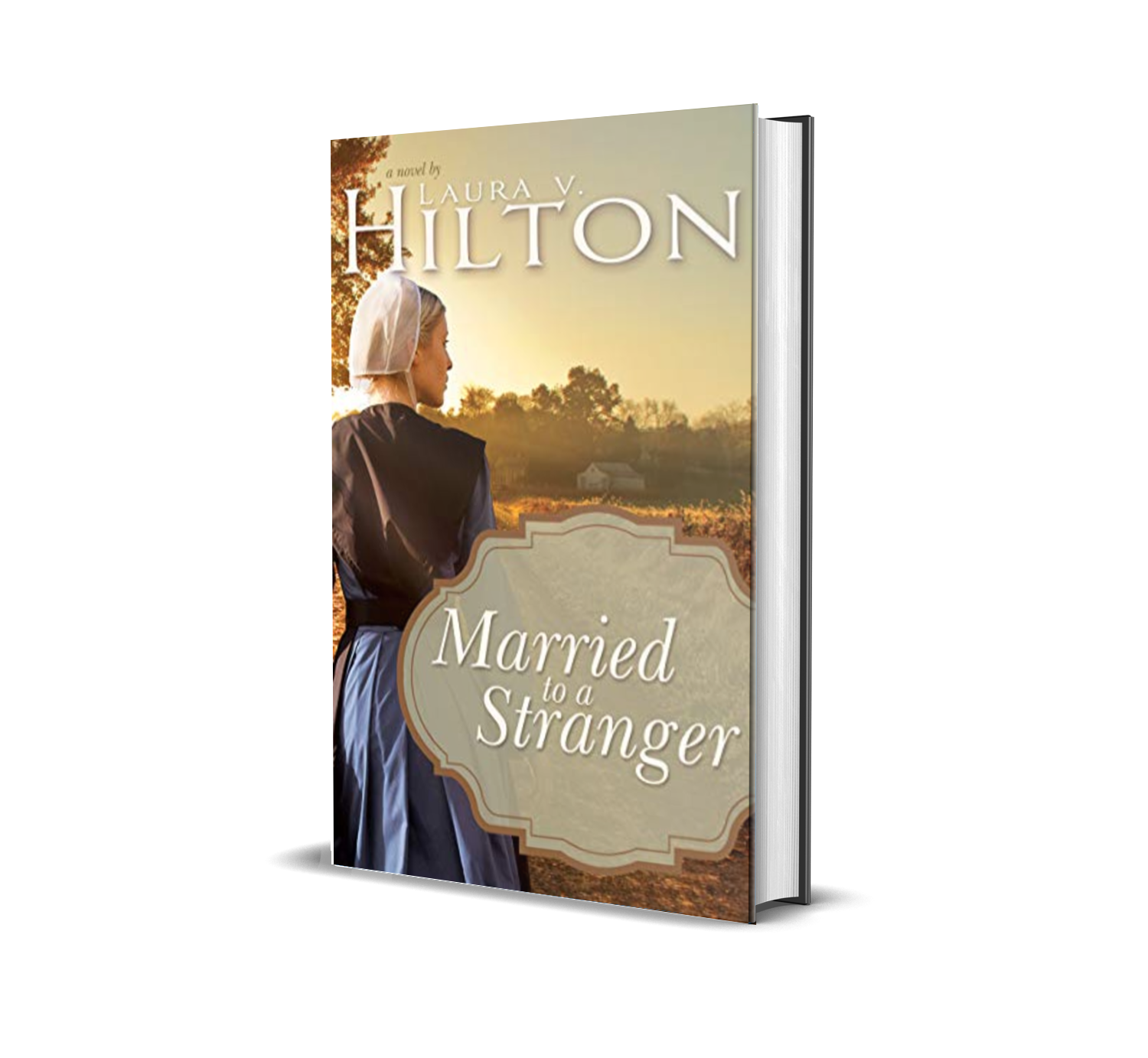 Married to a Stranger by Laura V. Hilton