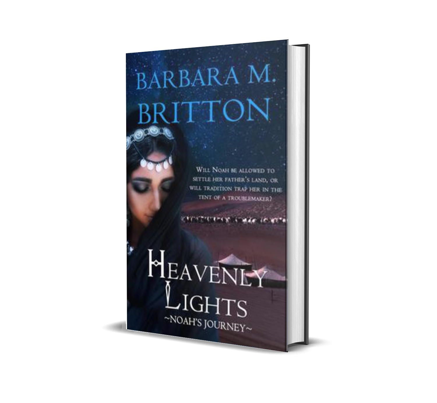 Heavenly Lights: Noah's Journey by Barbara M. Britton