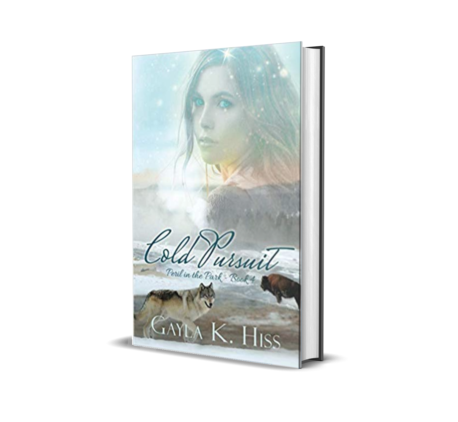 Cold Pursuit by Gayla Hiss