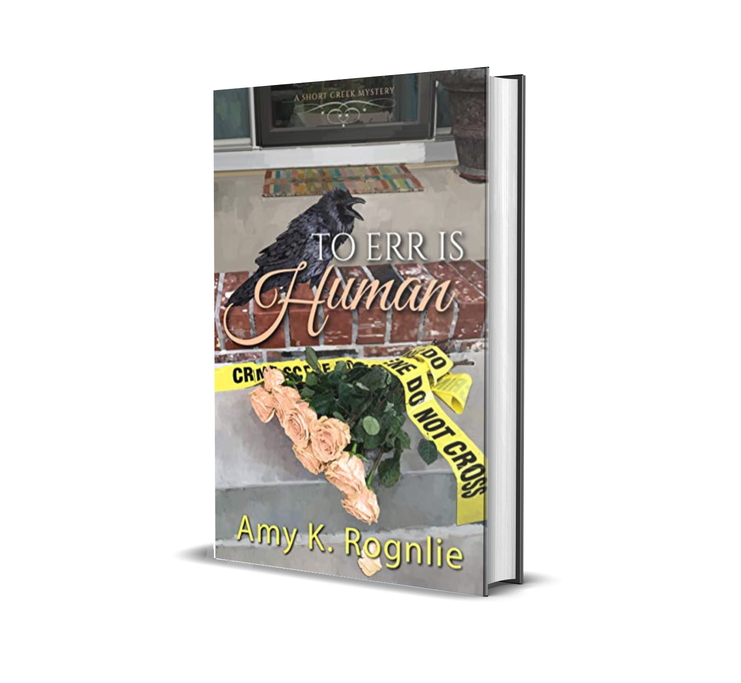 To Err is Human  by Amy K. Rognlie
